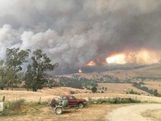 Австралійські лісові пожежі